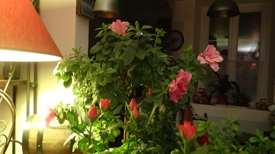 Le Bouquet de la Fin de Semaine