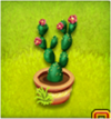 pot de cactus à feuilles fleur-rouge