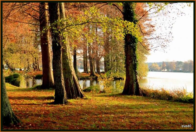 C'est encore l'automne..