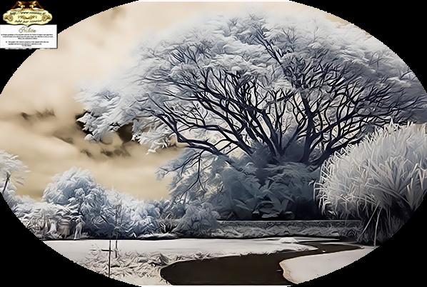 images couleurs d'hiver, tubes hiver, hiver,