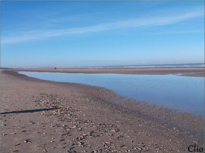 Défi de Khanel - Août 2017 : Le milieu aquatique