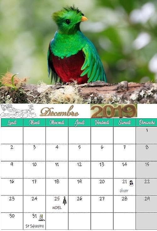 Mon calendrier 2019