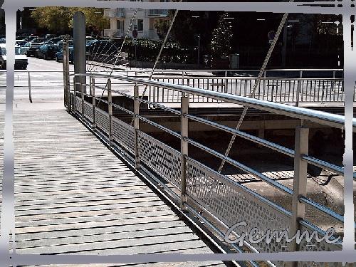 Pont du Parc Chabrières, Oullins (69)