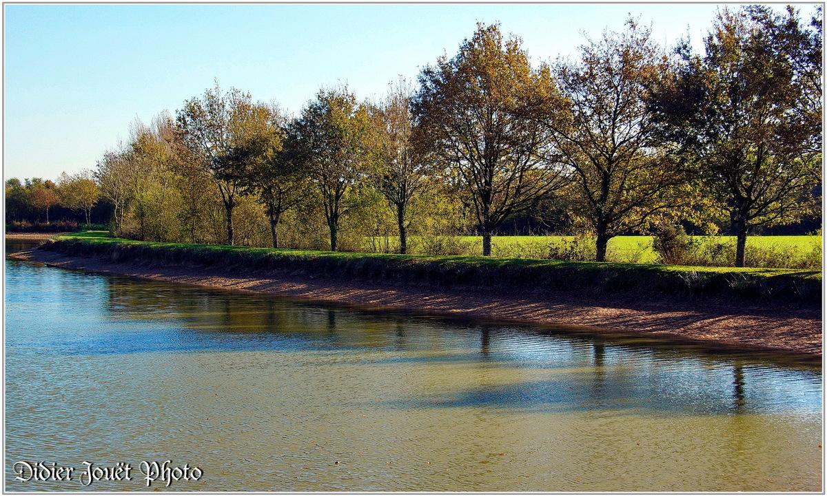 (85) Vendée - La Chaize le Vicomte (20) - Couleurs d'automne