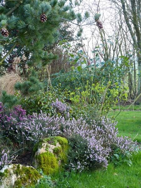 un week end au jardin