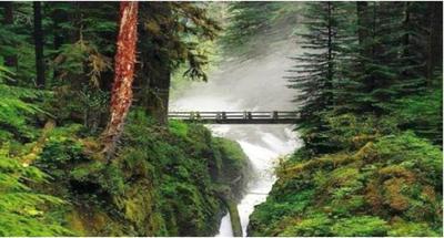 Blog de roselyne :Humanité, Nature,  Amour et lumière, La nature est vraiment magnifique ....