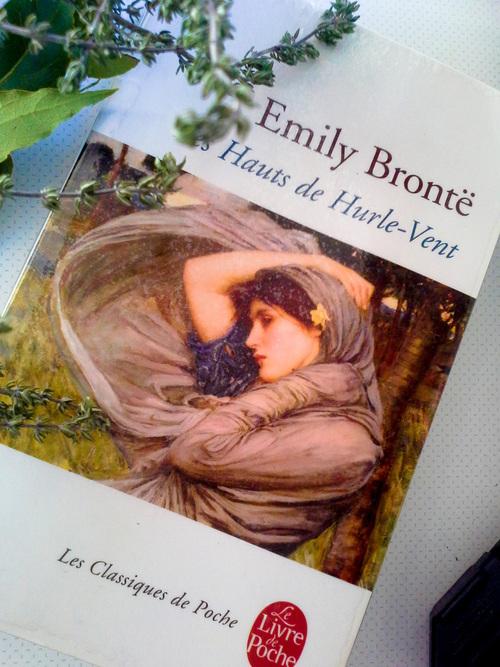 Les Hauts de hurlement d'Emily Bronte