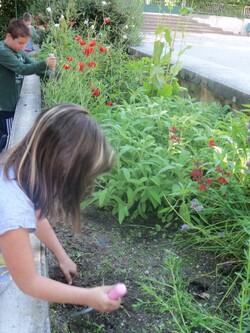 Jardinage à l'école