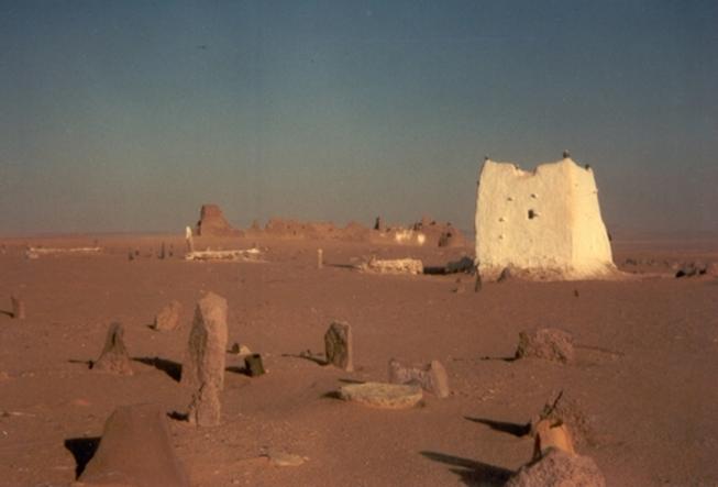 Noël au Sahara : le retour à Timimoun