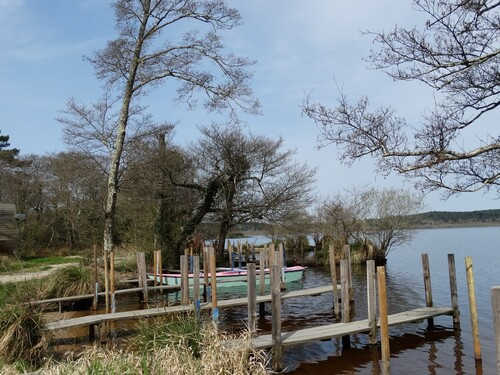 Le lac de Léon dans les Landes...