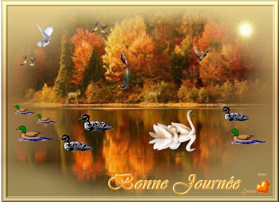 BONNE JOURNEE LAC AUTOMNE - BONNE JOURNEE - lynea18 - Photos - Club  Doctissimo