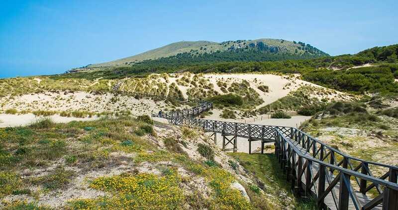cala mesquida - est de l'île - majorque