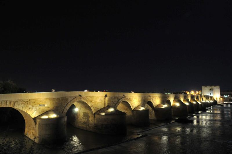 Nuits andalouses