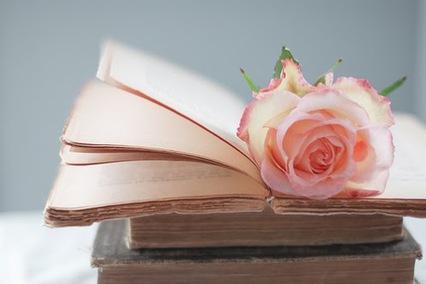 Image result for rose sur livre