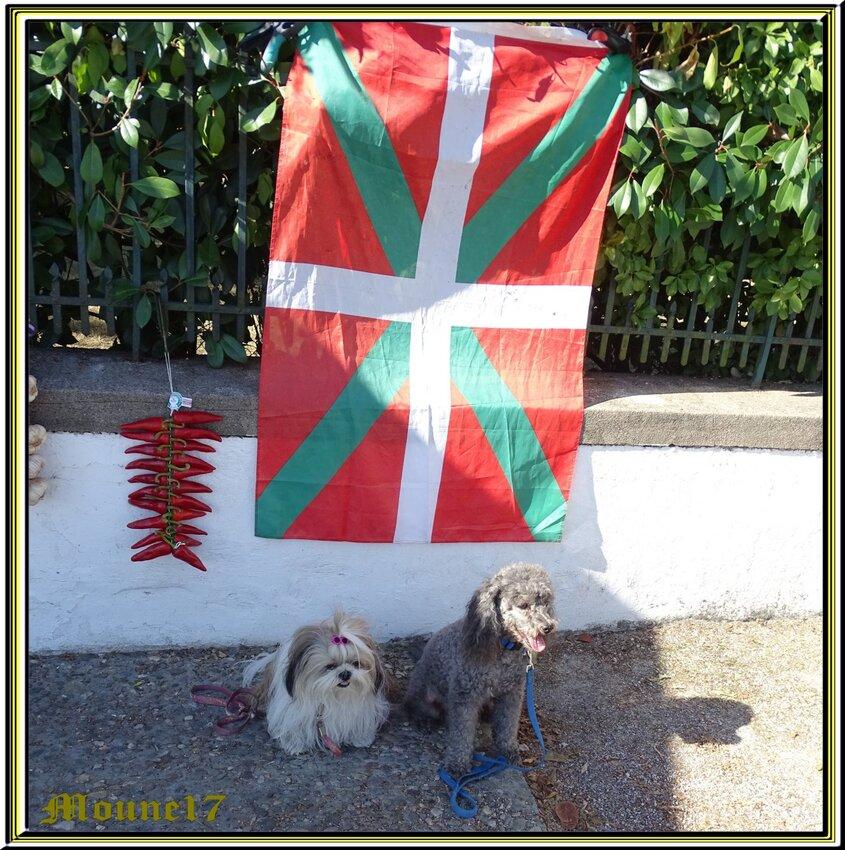 Suite au pays basque Espelette