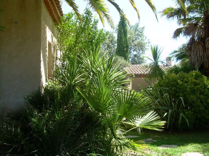 Mon jardin ..