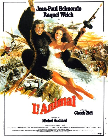 L'ANIMAL - BOX OFFICE JEAN-PAUL BELMONDO 1977