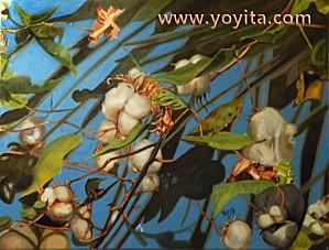 cotton-boll-painting-yoyita