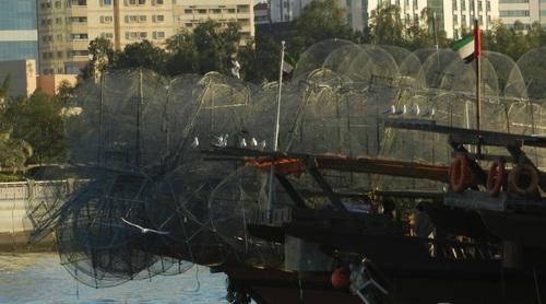 UAE Abu Dhabi boutres