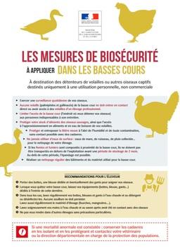 Influenza aviaire - Mesures de biosécurité dans les basses cours