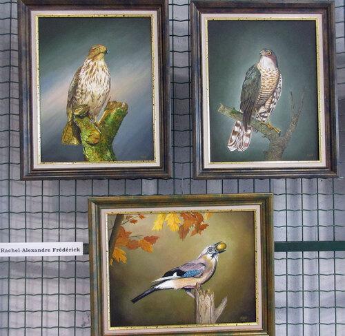 Exposition sur la pêche, la chasse et les oiseaux à Vresse