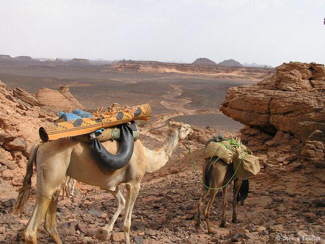 Trek dans l'Akakous, Libye (2005)