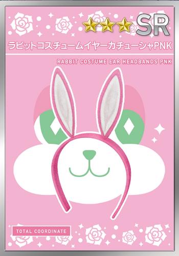 Rabbit Costume - Keigo