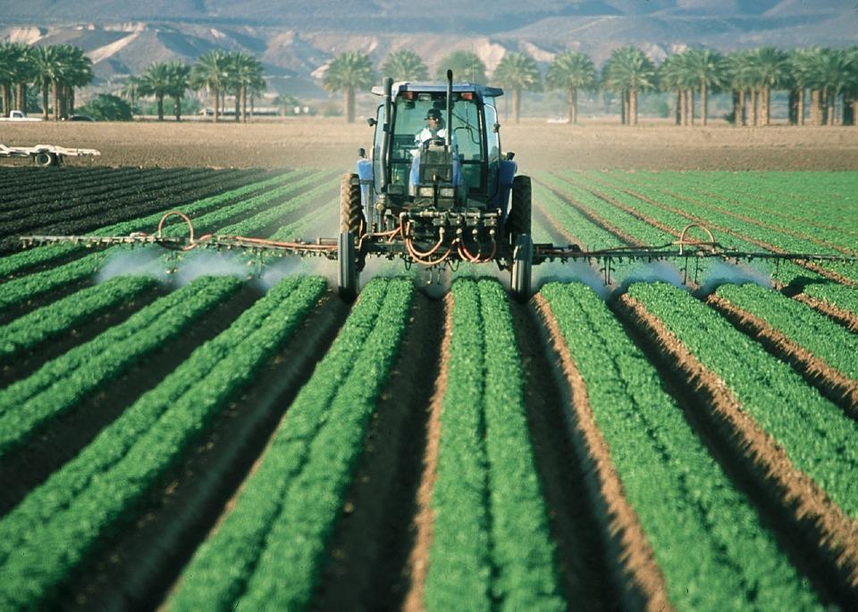 Agriculteur, Tracteur, Agriculture, Ferme