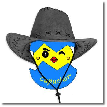 Le jeu des cowboys