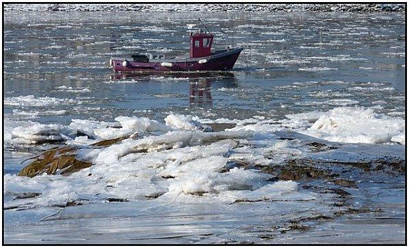 glace-bateau-violet-nantes.jpg