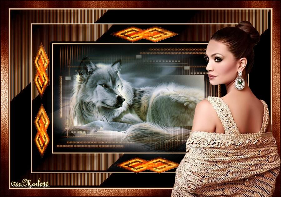 ♥ Le loup ♥