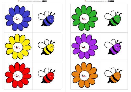 Associe l'abeille à sa fleur