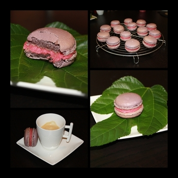 montage macarons framboise