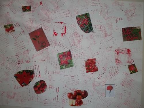 Nos affiches sur les objets, animaux et végétaux rouges