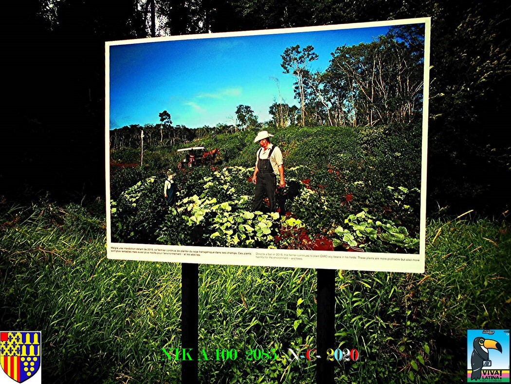 FESTIVAL PHOTO N° 17 LA GACILLY 56  1/4   D   21/09/2020