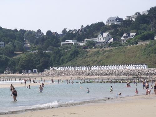 Coucou du Cotentin