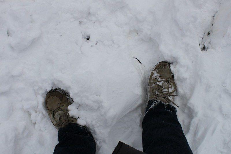 Neige en Monts d'Arrée 075