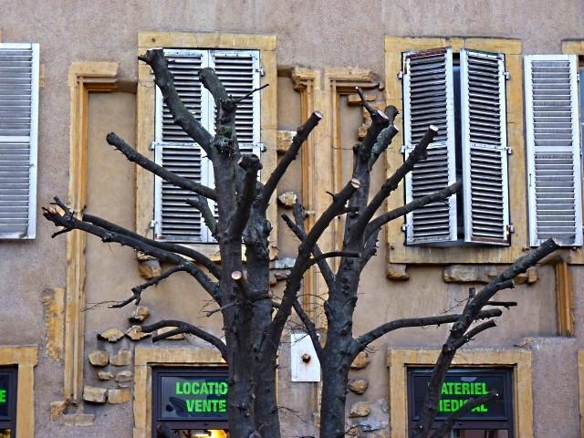 10 Vivre à Metz 17 Marc de Metz 2011