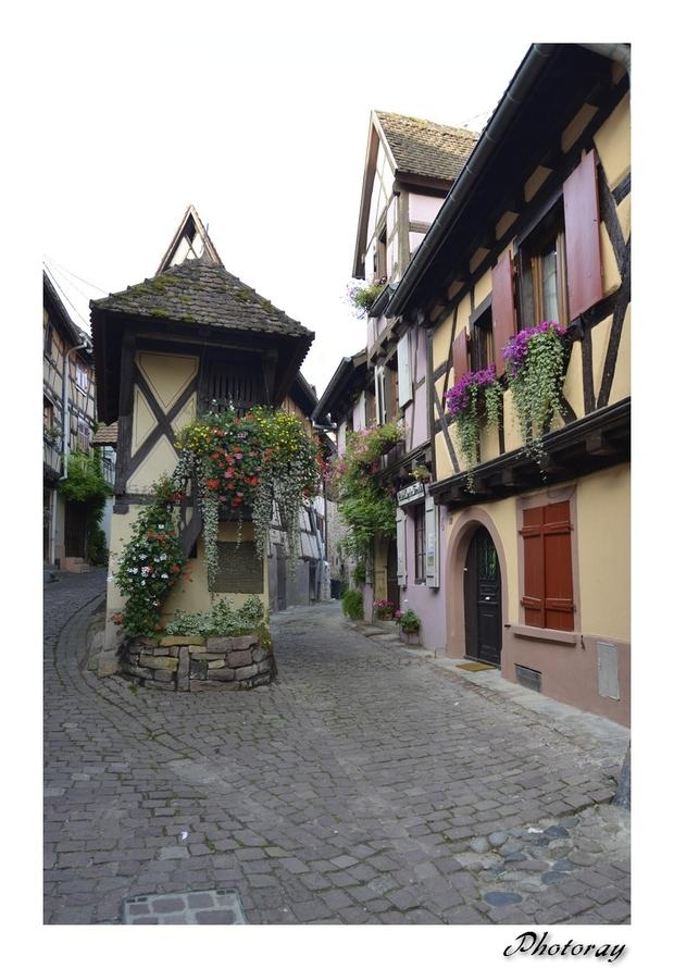 Eguisheim - Haut Rhin - Alsace - 9 Septembre 2014