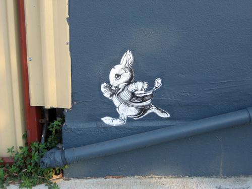 Des histoires de lapins de rues