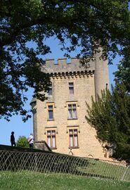 Le château de Puymartin