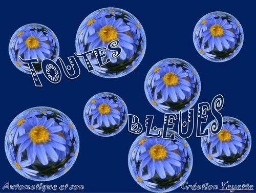 Toutes Bleues