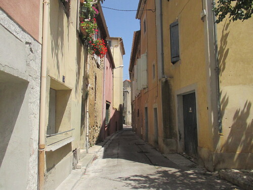 Rue du géranium