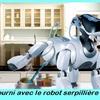 robot chien.jpg