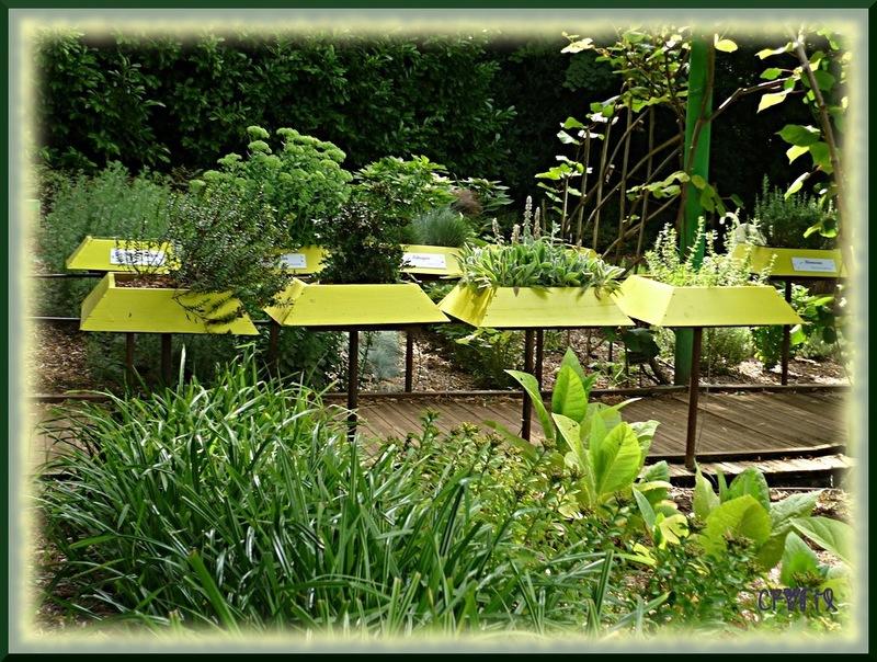 Les jardins Panoramiques de Limeuil (suite)