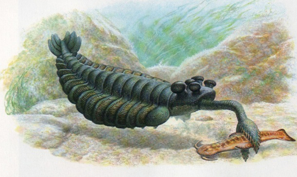 préhistoriques créatures-animaux-3