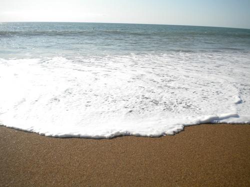 L'Ecume des jours ..et de Mer