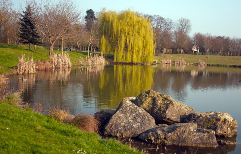 Brie Comte Robert : Parc François Miterrand