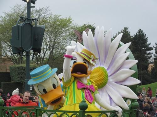 Disneyland 11(la parade des fleurs)