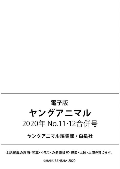 Magazine : ( [Young Animal] - 2020 / N°11-N°12 - Enako & Kokoro Shinozaki Staring )